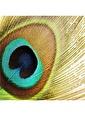 Artikel Renkli Çizgi Detaylı Dekoratif Yastık Kırlent Kılıfı 45x45 cm Renkli